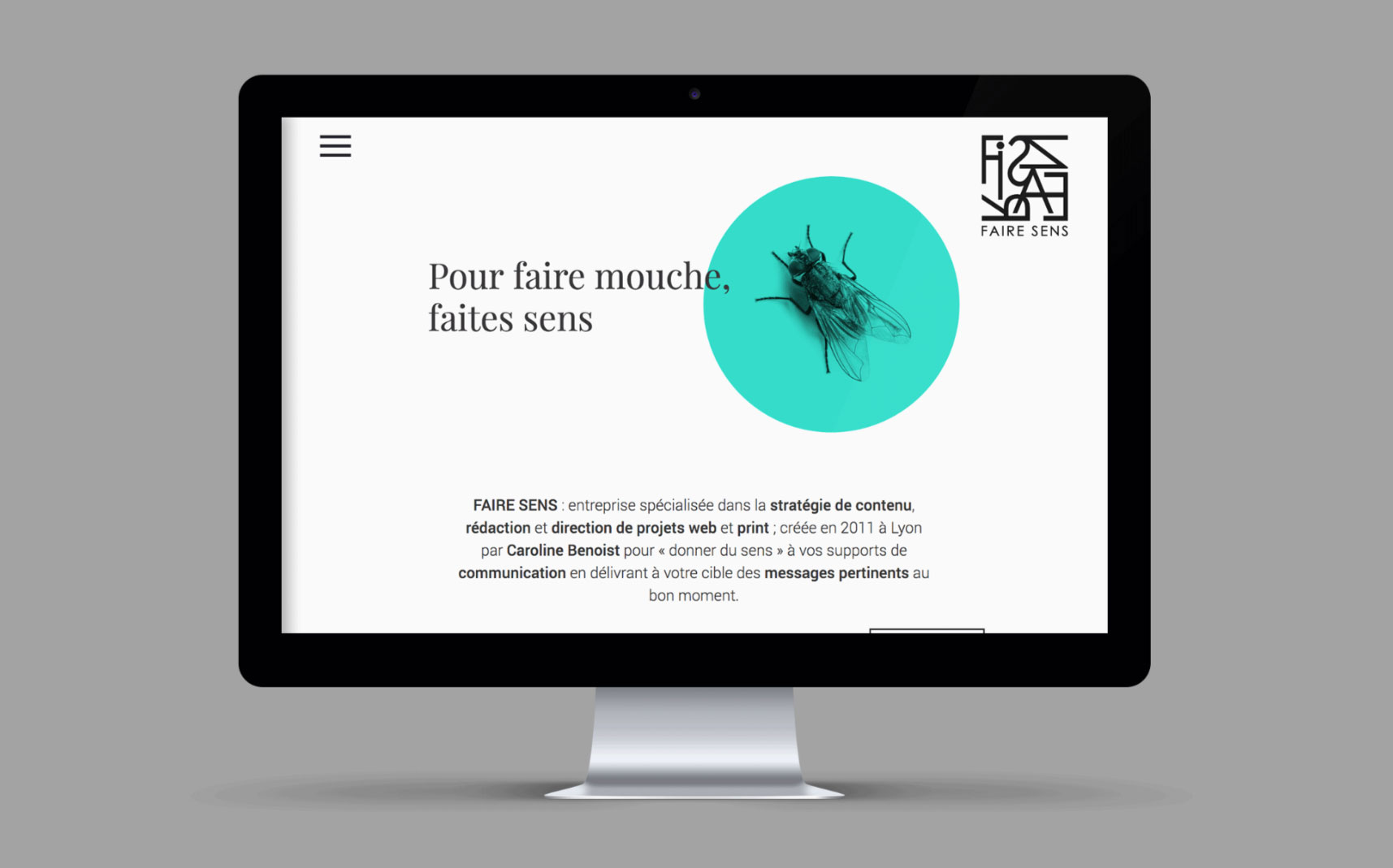 Faire Sens site web desktop